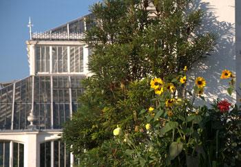 Kew-Gardens-2